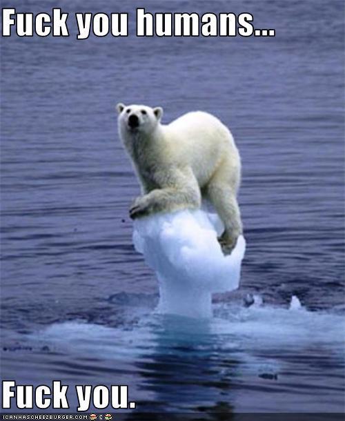 polar bear fuck humans