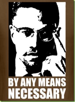 malcom-x-by-any-means-necessary